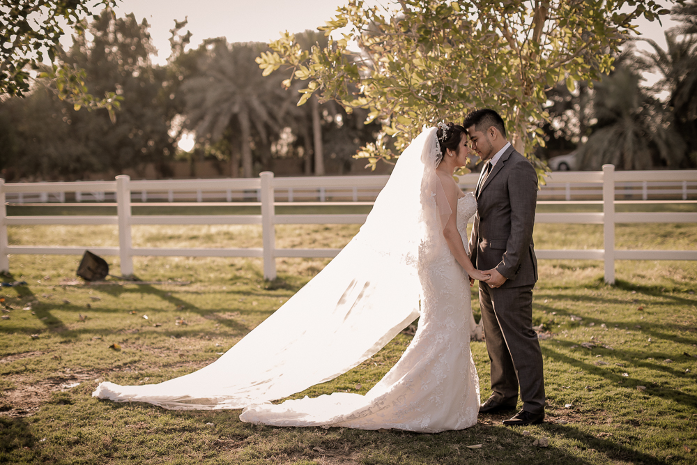 Desert Palm Per Aquum Wedding